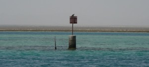 cropped-shubbuck-chanel-bouc3a9e-mangrove.jpg