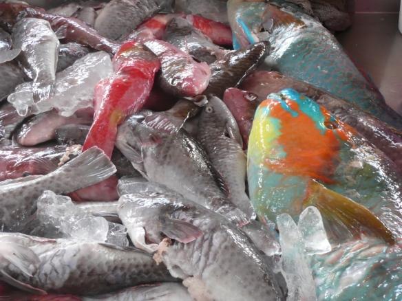 Fish market Mindelo