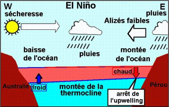 Très schématique structure Ouest-Est d'un phénomène El Nino