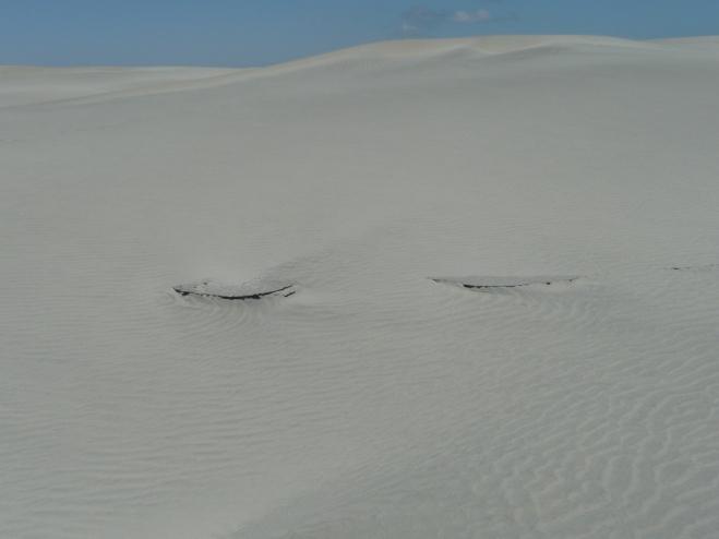 Dunes des 40° Sud.