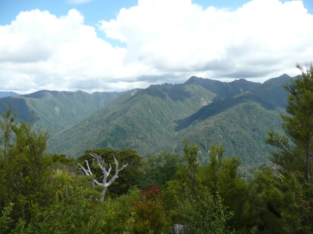 Le Heaphy Track, 4 jours de marche 80 km, à travers la forêt et la lande pour rejoindre la mer de Tasmanie. Totalement désert, trop pentu pour l'élevage.