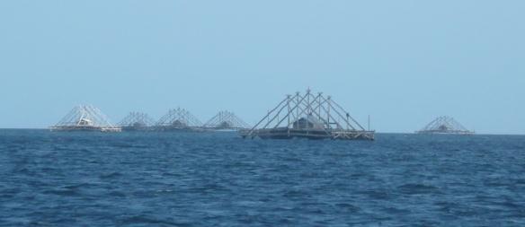 Kei Islands – Plateformes de pêche. Elles sont autopropulsées, restent en place deux/trois jours, la cabane abrite un gardien, puis l'équipage relève filets et lignes à calamars (cumi-cumi).