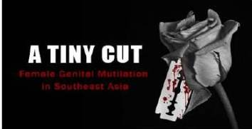 A tiny cut – Female circumcision in South Asia in Islamic Monthly 12 mars 2013.
