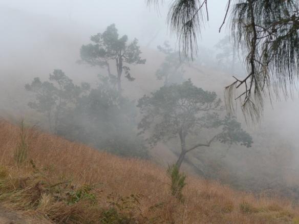 Les montagnes célestes des pentes du Gunung Rinjani.