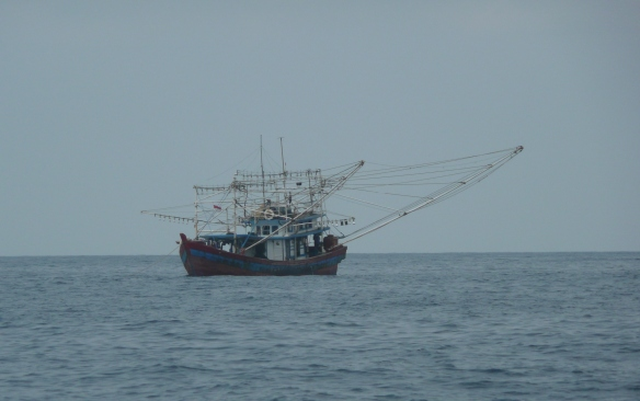 Détroit de Kalimantan - Pêcheur au lamparo au mouillage pendant la journée