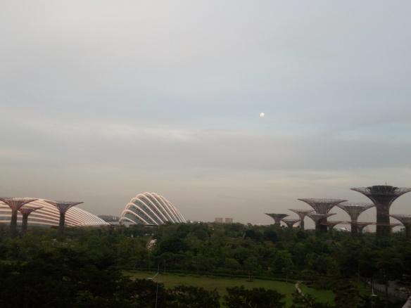 Singapour – Gardens by the bay. Grâce au sable acheté/trafiqué en Indonésie, 23 % de la ville est bâtie sur de la terre conquise sur la mer (reclaimed land). La politique verte menée par Lee Kwon Yew -le grand jardinier- a transformé la cité en jardin. Le surnom «Red Dot» fait référence au minuscule point sur la carte du Sud-Est Asiatique que représente S'pour par opposition aux géants de l'Indonésie et de la Malaisie. Il symbolise également le contraste «communiste» face aux deux régimes musulmans.
